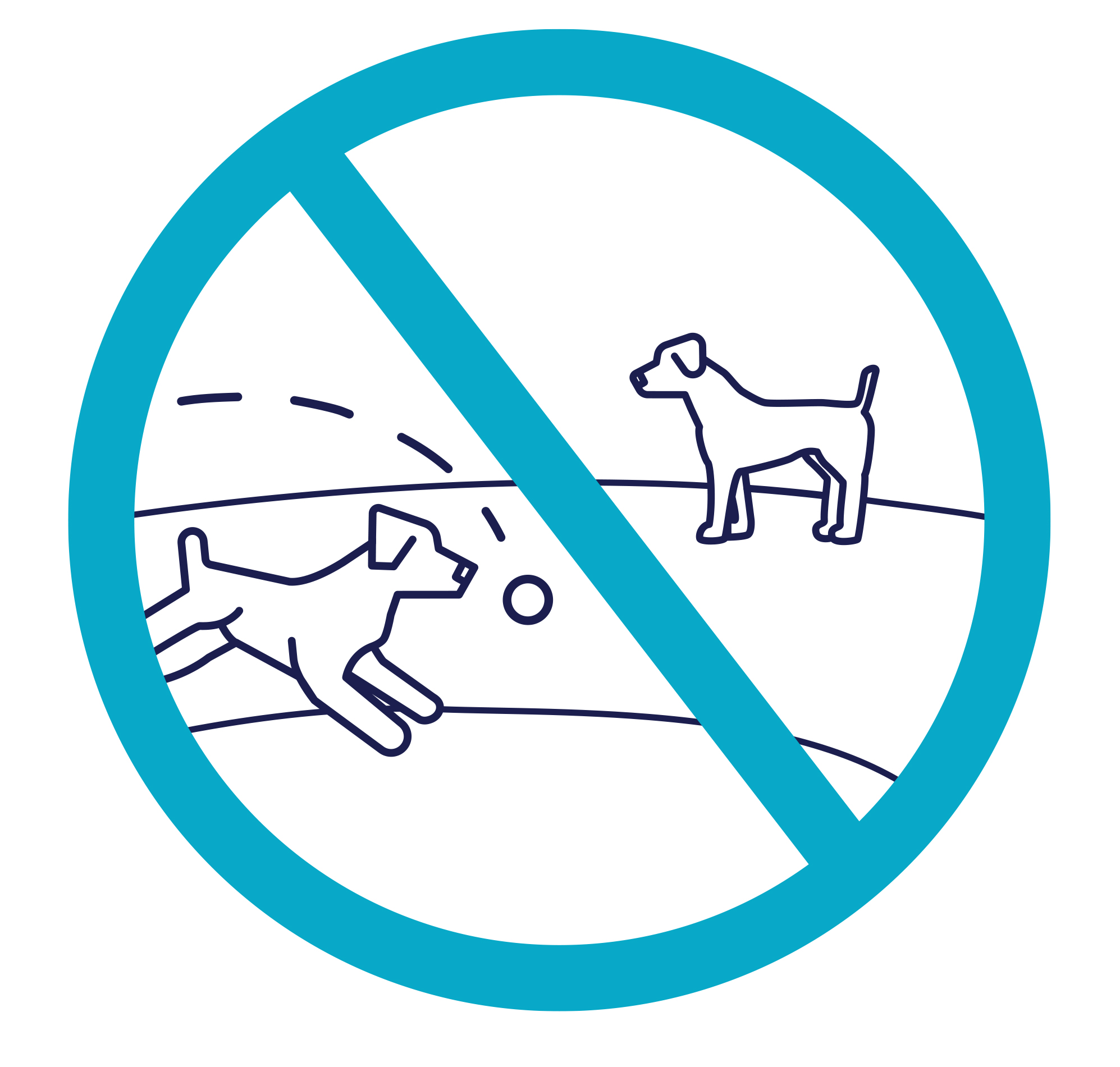 Dog Park Closure