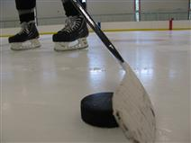 Drop-in Sticks and Pucks