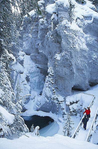 business licence application form mountain parks canada